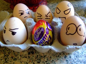 Photo of real eggs that are angry at a Cadbury egg